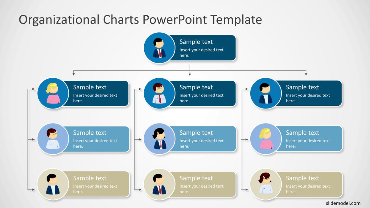 Top Down Organizational Chart PowerPoint Template