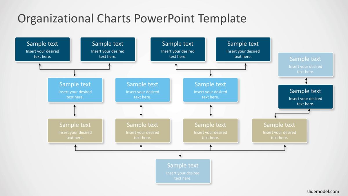 Bottom Up Organizational Charts PowerPoint Templates