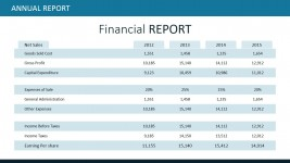 Financial Report Table for PowerPoint