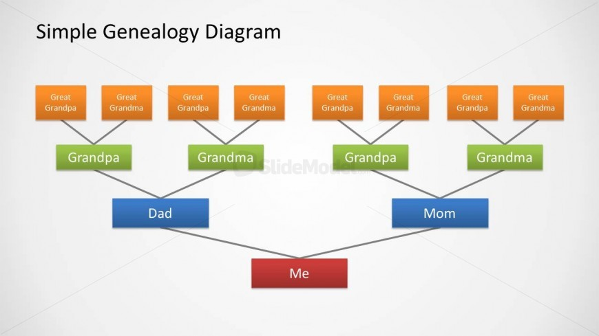 Family Tree Diagram Design For Powerpoint With 4 Levels Slidemodel