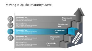 Presentation of Maturity Model Ladder