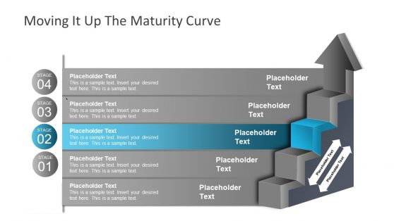 Ladder Diagram Template Maturity