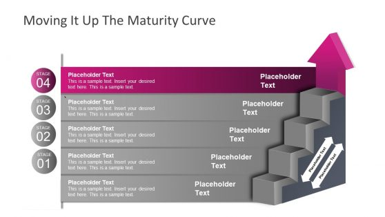 Business Maturity Ladder Diagram