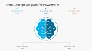 Brain Concept Diagram for PowerPoint