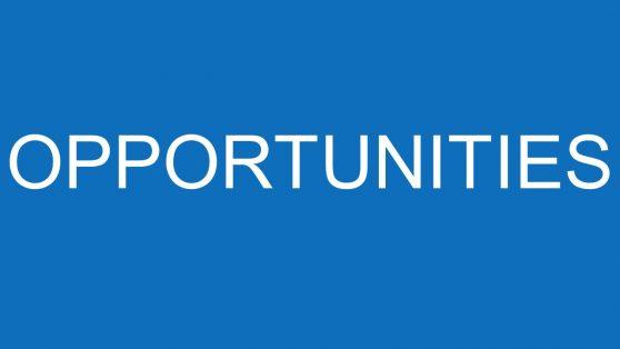 Slide of SWOT Opportunities