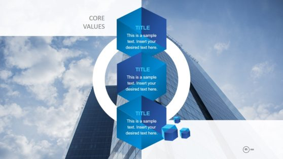 PPT Core Values of Company