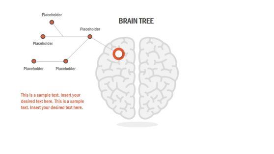 Diagram Template of Brain Tree