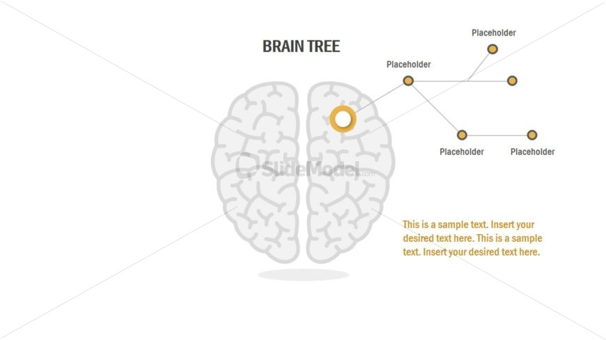brain powerpoint concept diagram