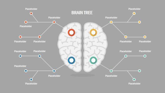 Editable Brain Tree Concept Diagram