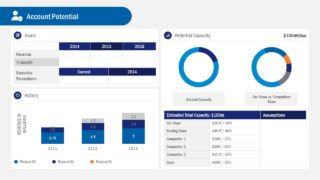Business Account Plan Dashboard