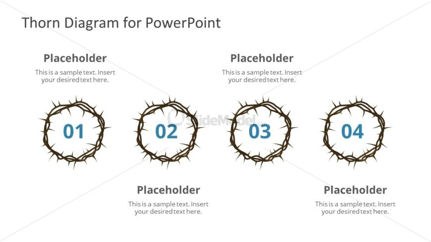 PPt 4 Segments Crown of Thorn