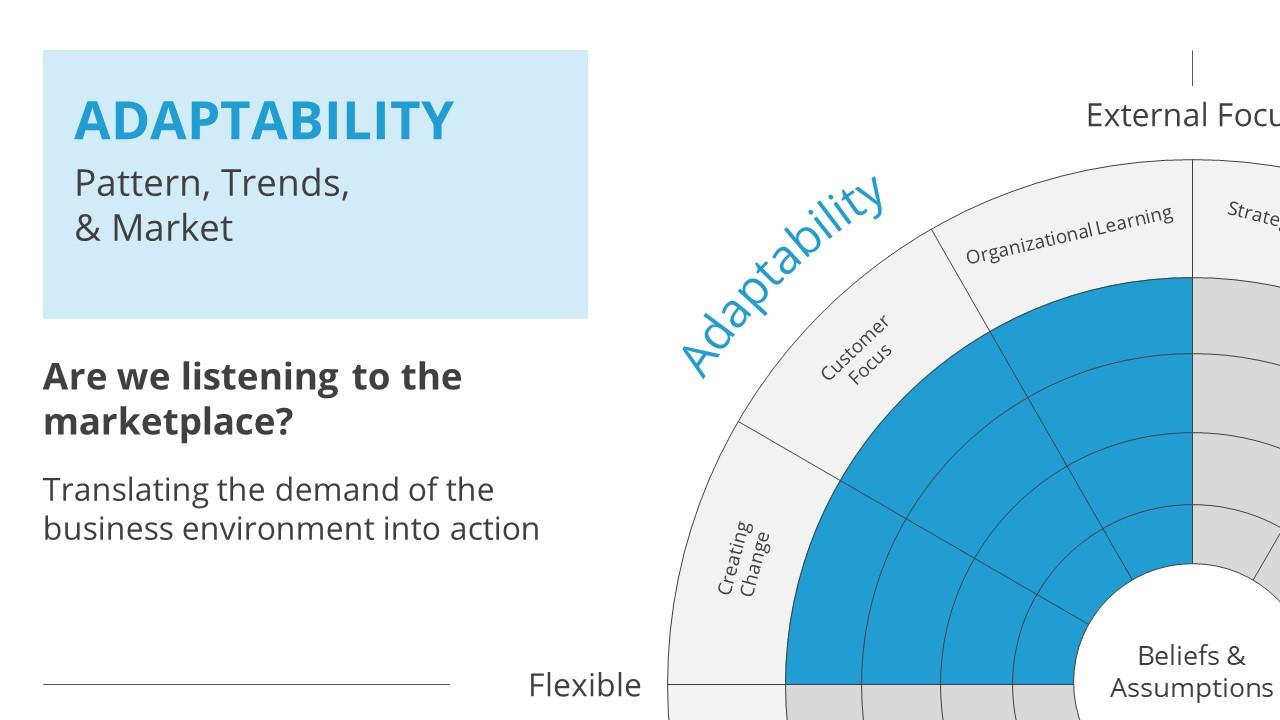 Slide of Denison Model Adaptability Section