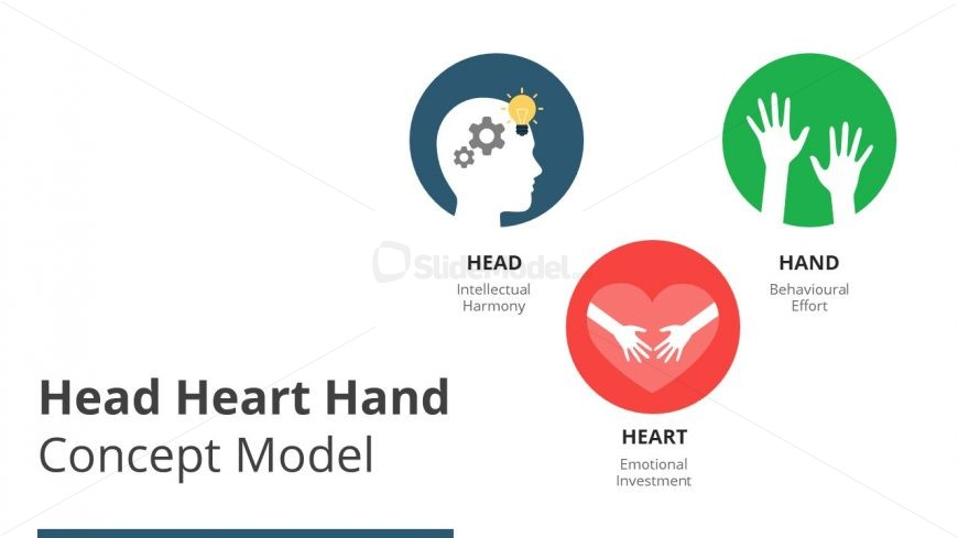 Change Management Model of Head Heart Hand