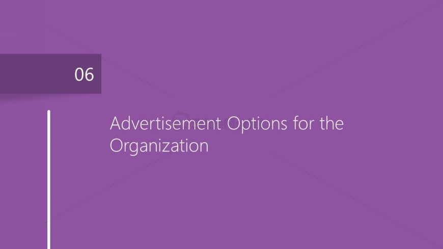 Advertising Options Chapter Market Plan