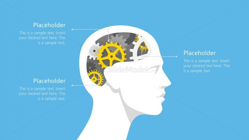 Presentation of Gears and Human Head Shapes