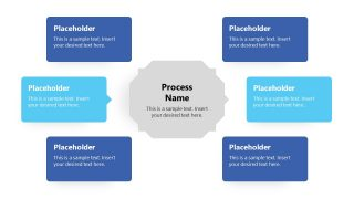 Text Placeholders for Turtle Diagram
