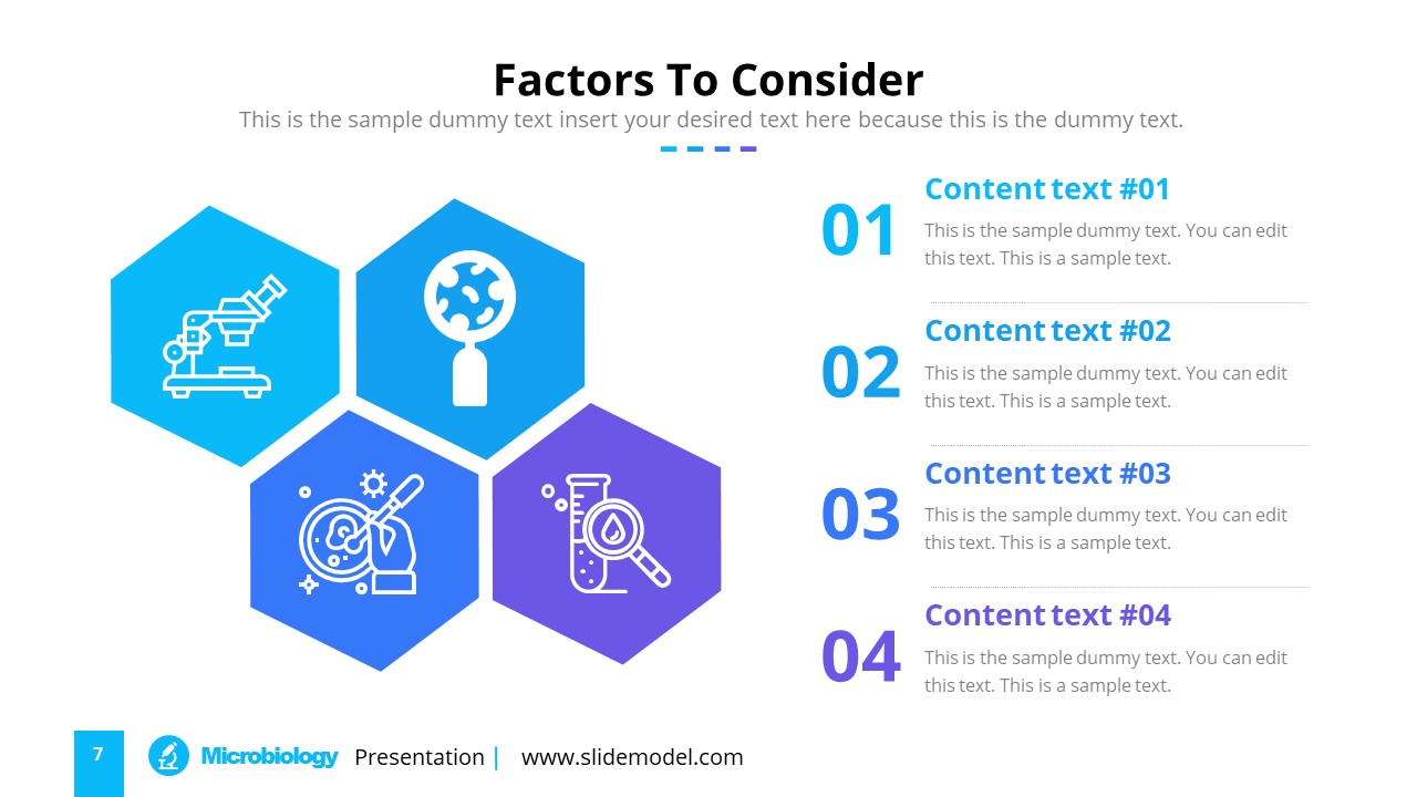 Infographic Hexagon Shapes Template