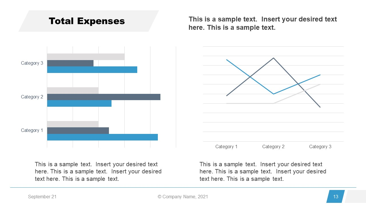 Corporate Annual Report Template of Total Expenses