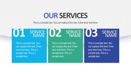 Company Product Services Editable Slides