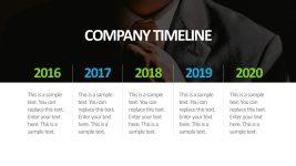 Company Timeline PowerPoint Presentation Slide
