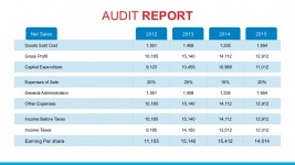 Annual Net Sales PowerPoint Report Template
