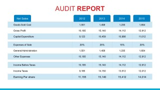 Yearly Expenditures Audit PowerPoint Template Report