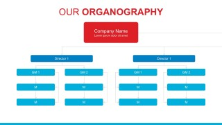 Company Departments And Hierarchy Template