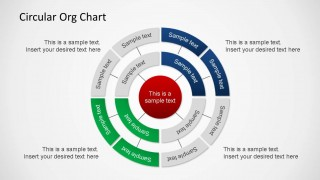 Three Layer Circular Org Chart PowerPoint Shapes