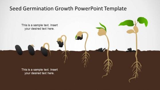 germination powerpoint templates