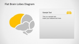 Frontal Brain Lobe Diagram for PowerPoint