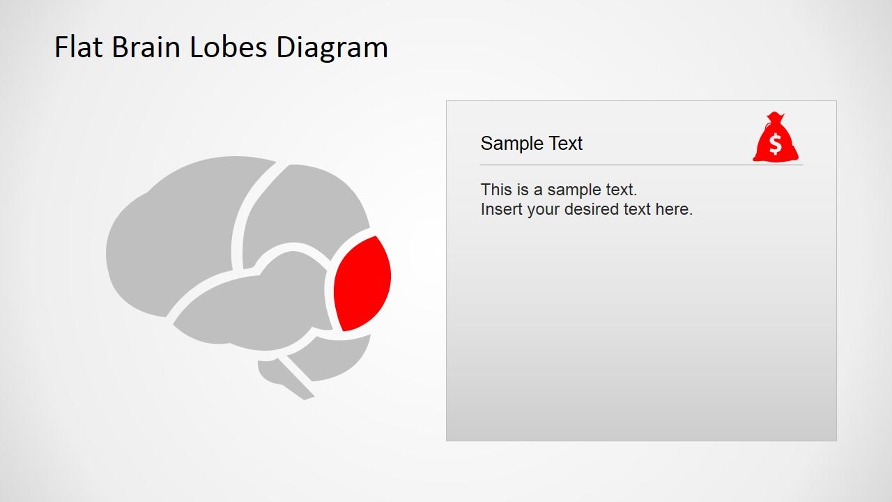 Flat Brain Lobes Diagram for PowerPoint - SlideModel