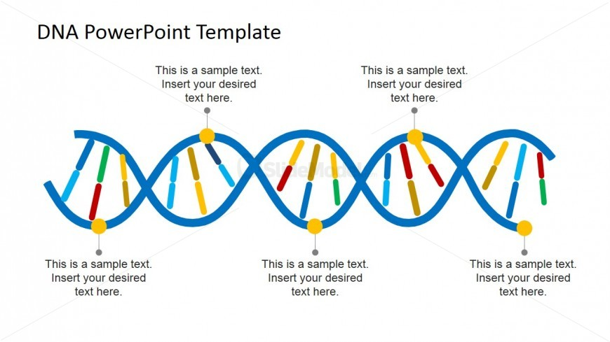 Featured on the PowerPoint template is a DNA PowerPoint diagram slide ...