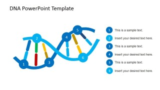 DNA Strands Shapes for PowerPoint