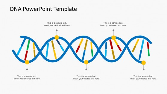 Biology powerpoint templates organization culture dna powerpoint templates toneelgroepblik Image collections