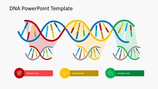 Breaking Down DNA Strands With Icons and Text Boxes