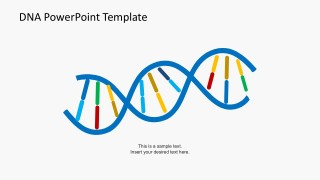 DNA Strands PowerPoint Template Slides