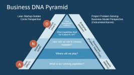 Flat Pyramid of Business DNA Framework