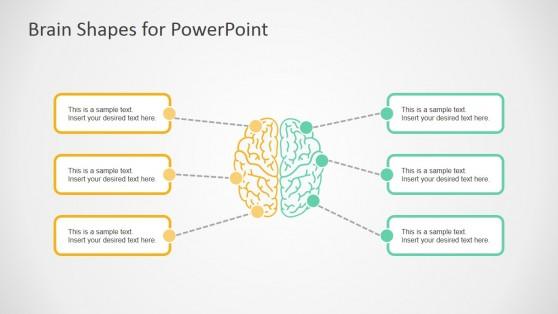 7032-01-brain-infographic-2