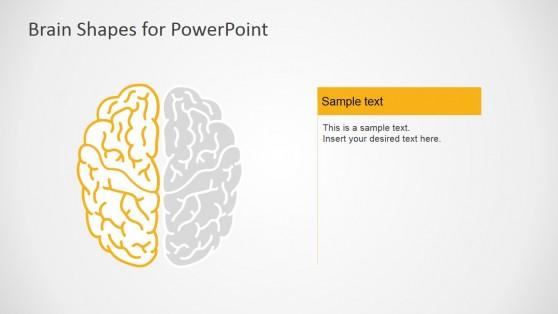 7032-01-brain-infographic-4