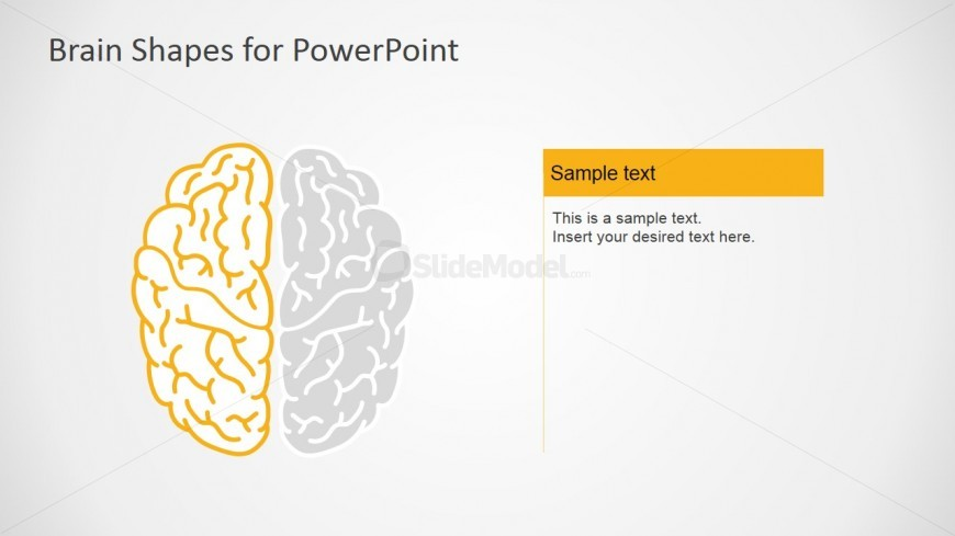 Left Brain Functions PowerPoitn Slides