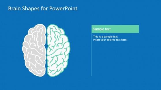 7032-01-brain-infographic-7