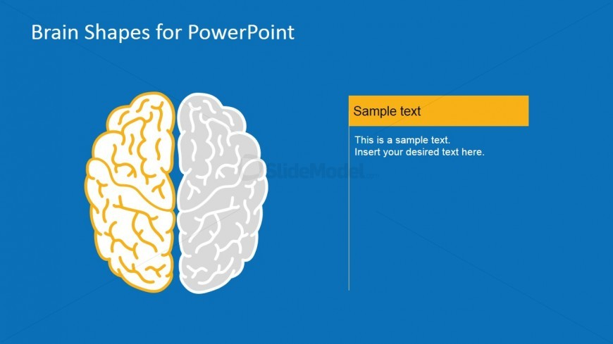 Brain PowerPoint Vectors For Presentation