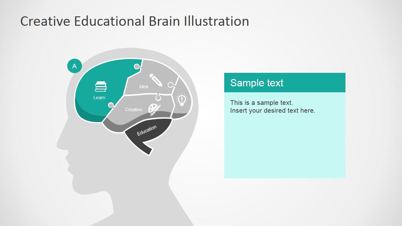 Creative educational brain powerpoint template slidemodel brain head illustration for powerpoint learn section illustration slide in human brain toneelgroepblik Images