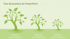 Tree Diagrams With Roots for PowerPoint