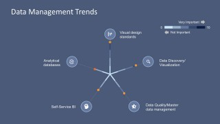 Business Data Management Visual Standard Design