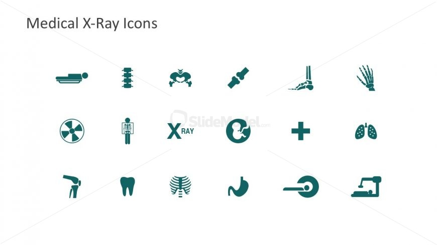 Editable Icons for Medical Radiology