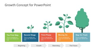 Tree Growth Business Metaphor PowerPoint