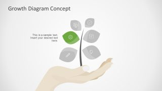 6 Segment PPT Growth