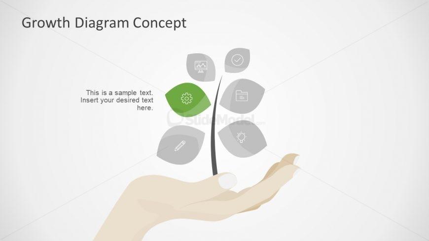 6 Segment PPT Growth
