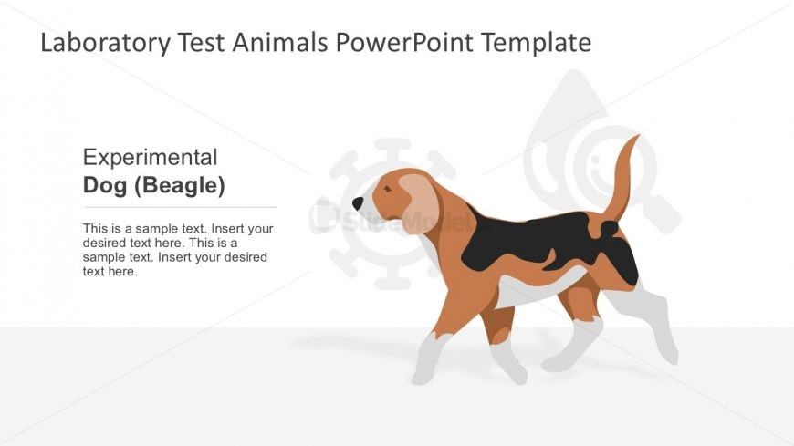 Dog Shapes Animal Testing Vectors